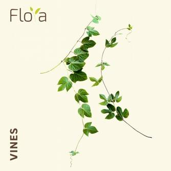 VA - Vines Free download
