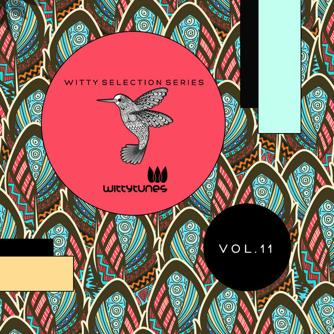 Witty Selection Series Vol. 11 Free download