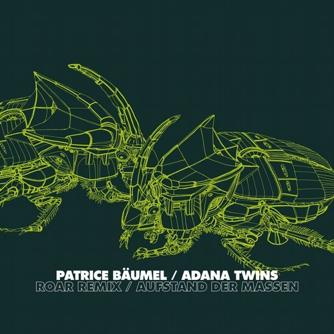 Patrice Bäumel - Roar Remix, Aufstand der Massen Free download