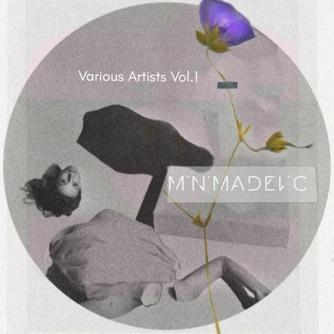 Minimadelic V.A, Vol. 1 Free download
