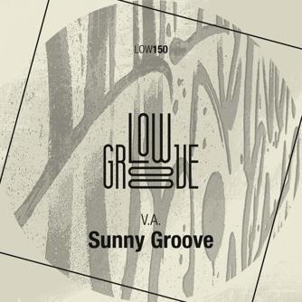 Sunny Groove Free download
