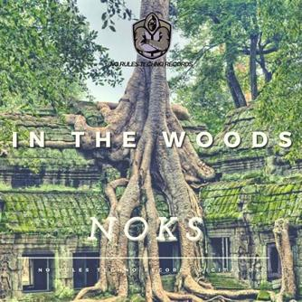 In the Woods Free download